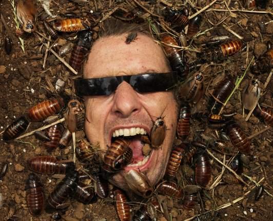 Season 4 Snake/Roach Photo Shoot