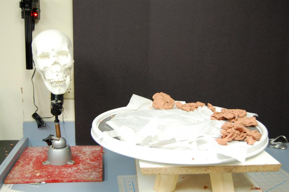 Forensic artist reconstructs faces with clay