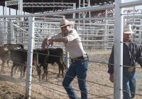 Branch is no stranger to bronc riding