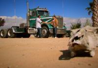 Antonio meets big rig trader