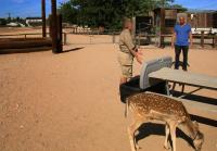 Steve meets with zoo owner