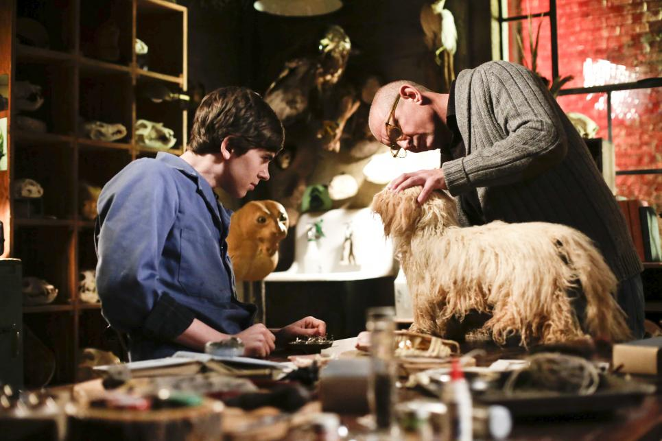 Norman and Will chat during taxidermy