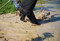 Billy wrestles gator in rolling river