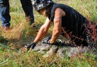 Billy wrestles an alligator in Texas