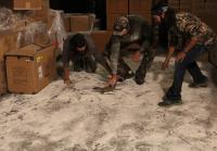 Duck Commander team corners lizard
