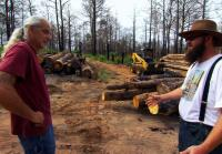 Roy wins bid to ship salvaged lumber