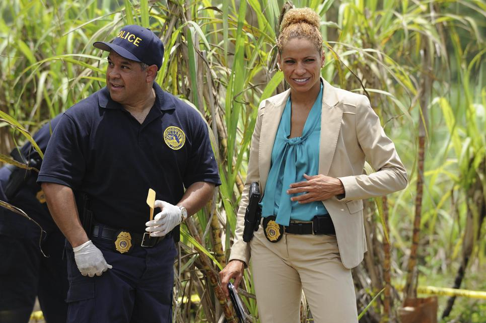 Michelle Hurd plays Colleen Manus on The Glades