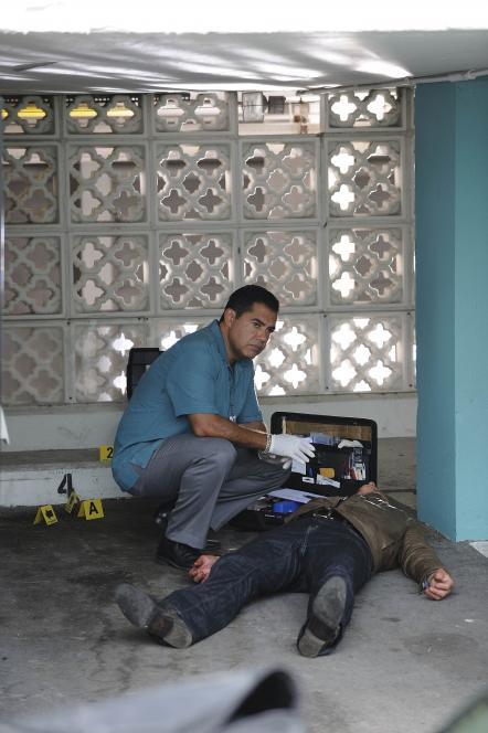 Sanchez examine puncture wounds
