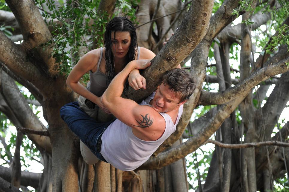 Jim and Jennifer climb tree to escape panther