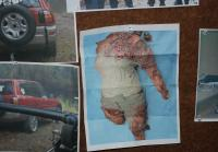 Headless torso hangs in art department
