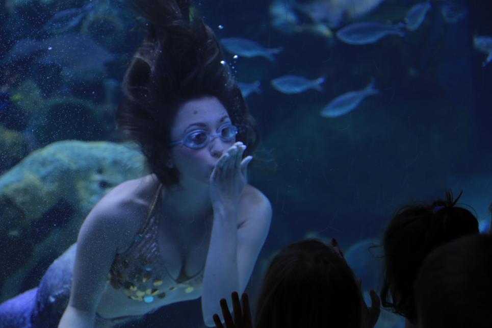 Mermaid Blows Kisses