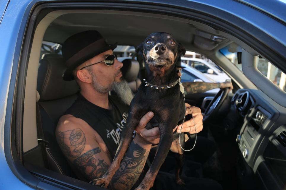 Ruckus found a new dog