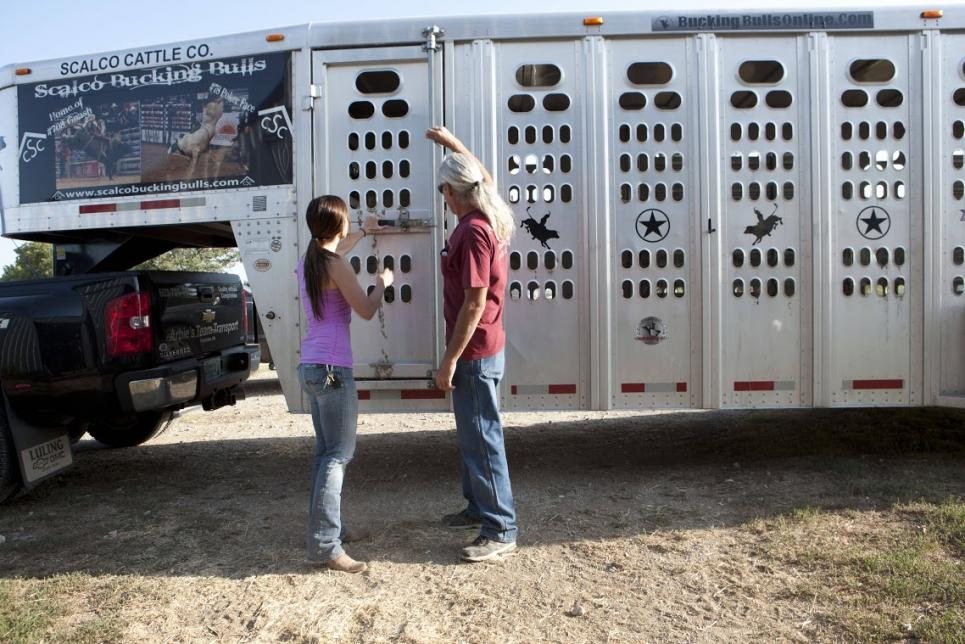Jennifer and Roy strategize bull shipment