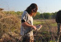 Jase Finds a Gator