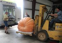 Jarrett Loads an Extra Pumpkin Into His Trailer