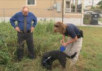 Detectives call in the AFT Canine Unit