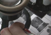 Latent Print Examiner looks at fingerprints