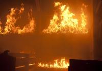 Barn fire kills family man and two horses
