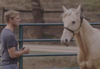 Lee Tames A Horse